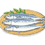 【EPA・DHA】オメガ3脂肪酸で魚不足を解消させるサプリメント人気おすすめランキング5選!