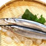 【魚不足解消】魚不足の解消方法は?症状・対策・基礎知識まとめ!
