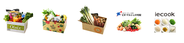 一人暮らしにも便利な野菜宅配サービス