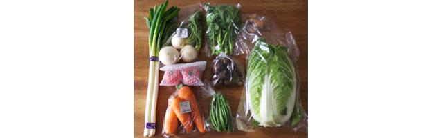 野菜摂取方法 宅配サービス