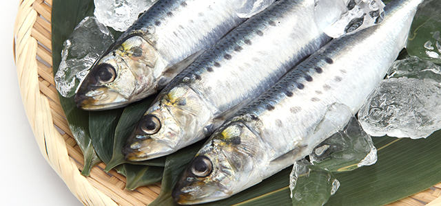 魚不足解消サプリ EPA・DHAサプリ