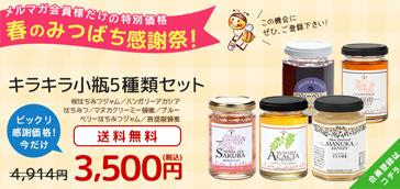 東京のはちみつ専門店武州養蜂園
